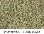 dried rosemary condiment... | Shutterstock . vector #1008710665
