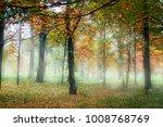 foggy autumn morning | Shutterstock . vector #1008768769