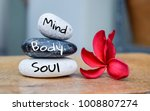 holistic health concept of zen... | Shutterstock . vector #1008807274