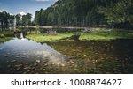 an idyllic lake in the... | Shutterstock . vector #1008874627