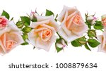 floral seamless pattern ... | Shutterstock . vector #1008879634