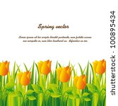yellow tulips over grass over... | Shutterstock .eps vector #100895434
