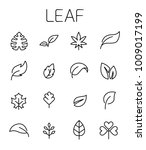 leaf related vector icon set.... | Shutterstock .eps vector #1009017199