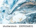 natural luxury. marbleized... | Shutterstock . vector #1009036831