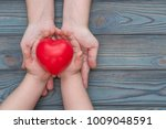 adult and child hands holding... | Shutterstock . vector #1009048591