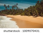 ocean coast with pandanus and... | Shutterstock . vector #1009070431