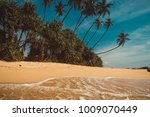 ocean coast with coconut palm... | Shutterstock . vector #1009070449