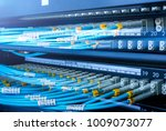 optical cable close up. network ... | Shutterstock . vector #1009073077