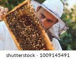 beekeeper collecting honey   Shutterstock . vector #1009145491