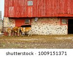 Small photo of Wisconsin cow barn