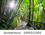 hiking in green tropical jungle ... | Shutterstock . vector #1009212505