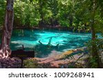 emerald pool  one of the most... | Shutterstock . vector #1009268941