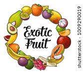 circle shape set fruits. vector ... | Shutterstock .eps vector #1009290019