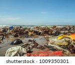 plastic bottles and trash on... | Shutterstock . vector #1009350301
