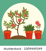 beautiful flowers and plants... | Shutterstock .eps vector #1009449349