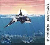 northern underwater landscape.... | Shutterstock .eps vector #1009491091