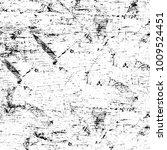 grunge black and white pattern. ... | Shutterstock . vector #1009524451