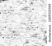 grunge black and white pattern. ... | Shutterstock . vector #1009535509