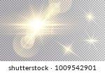 golden lights set. beatiful... | Shutterstock .eps vector #1009542901