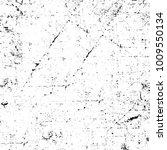 grunge black and white pattern. ... | Shutterstock . vector #1009550134