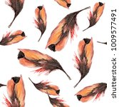watercolor feathers of a bird. | Shutterstock . vector #1009577491