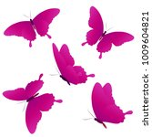 beautiful pink butterflies ... | Shutterstock . vector #1009604821