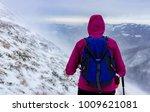 winter tracking from rozino... | Shutterstock . vector #1009621081