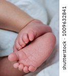 newborn legs with wrinkles | Shutterstock . vector #1009632841