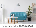 blue sofa under grey lamp and... | Shutterstock . vector #1009643341