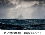imagine shackleton at elephant... | Shutterstock . vector #1009687744