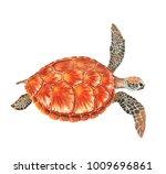 Sea Turtle Watercolor...