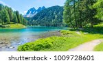 path  across the lake. wild... | Shutterstock . vector #1009728601