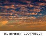 choi ha sky | Shutterstock . vector #1009755124