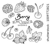 black and white berry... | Shutterstock .eps vector #1009772821