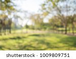 blur of city park bokeh... | Shutterstock . vector #1009809751
