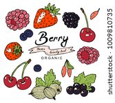 colorful berry collection in... | Shutterstock .eps vector #1009810735
