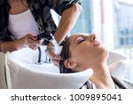 working day inside the hair... | Shutterstock . vector #1009895041