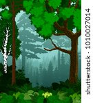 vector woodland green forest... | Shutterstock .eps vector #1010027014