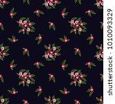 seamless vector ornamental... | Shutterstock .eps vector #1010093329