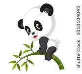 cute funny baby panda hanging... | Shutterstock . vector #1010104045