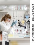 life scientists researching in... | Shutterstock . vector #1010154295