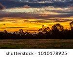 the colors of an australian... | Shutterstock . vector #1010178925