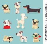 vector illustration set of cute ... | Shutterstock .eps vector #1010208811