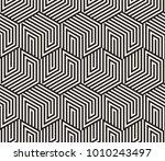 vector seamless pattern. modern ... | Shutterstock .eps vector #1010243497