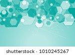 medical network isolated on... | Shutterstock .eps vector #1010245267
