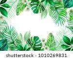 frame of green tropical leaves... | Shutterstock . vector #1010269831