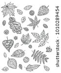 coloring book page with falling ... | Shutterstock .eps vector #1010289454
