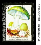 Small photo of MOSCOW, RUSSIA - DECEMBER 21, 2017: A stamp printed in Bulgaria shows Death cap (Amanita phalloides), Fungi serie, circa 1990