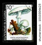 Small photo of MOSCOW, RUSSIA - DECEMBER 21, 2017: A stamp printed in Bulgaria shows Fool's mushroom (Amanita verna), Fungi serie, circa 1991