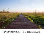 long wooden path through the...   Shutterstock . vector #1010308621